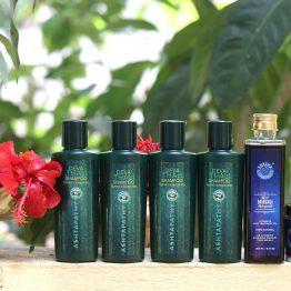 shesha ayurveda intensive hair treatment and hairfall control kit